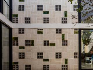 modern  by Taller Estilo Arquitectura, Modern