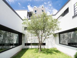 Jardines de estilo moderno de GIP Moderno