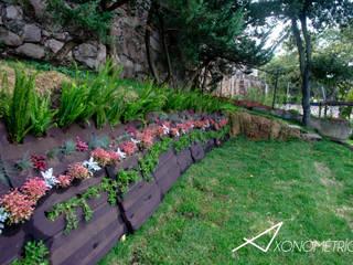 Muro Verde: Jardines de estilo moderno por Axonometrico