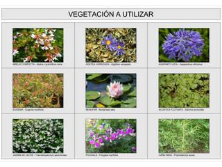 Jardín Las Enanas: Jardines de estilo  por Dhena CONSTRUCCION DE JARDINES,Moderno
