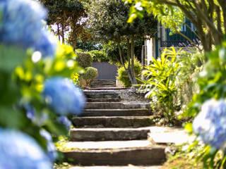 Rustic style garden by MORANDO INMOBILIARIA Rustic