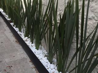 REMODELACION EN GENERAL/DISEÑO DE INTERIORES: Jardines en la fachada de estilo  por Berkana Shop