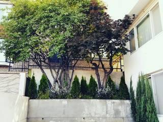 Modern garden by 보테니크 Modern