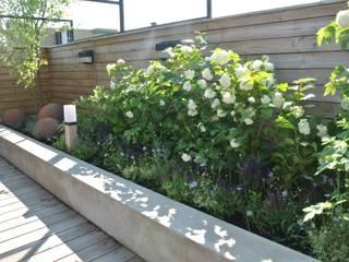 Scandinavian style garden by 보테니크 Scandinavian