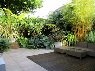 Modern Tropical Garden Design by Post Lush Garden Design Tropical style garden