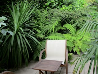 Tropical seating area: tropical Garden by Lush Garden Design