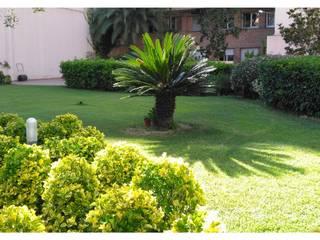 Jardín Particular en Gracia, Barcelona.: Jardines de estilo  de Ausbar