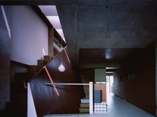宮山台の家 荒谷省午建築研究所/Shogo ARATANI Architect & Associates モダンデザインの リビング コンクリート 紫/バイオレット