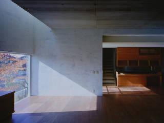 K HOUSE 荒谷省午建築研究所/Shogo ARATANI Architect & Associates モダンデザインの リビング 合板(ベニヤ板) 白色