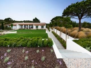 Jardíssimo Mediterranean style garden