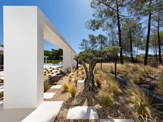 Jardíssimo Minimalist style garden