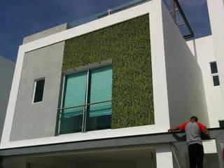 pb Arquitecto Terrace house