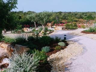 Cerro Azul 109: Jardins mediterrânicos por JARDIMGARVE