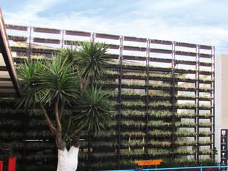 Boutique de Arquitectura (Sonotectura + Refaccionaria) Halaman depan