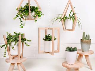 Mit Blumenampeln & Makramees Zimmerpflanzen und Kakteen hängend in Szene setzen:   von dasherzallerliebste,Skandinavisch