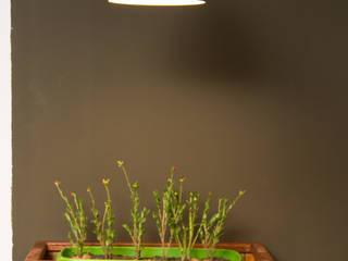 Espaço Gourmet: Cozinhas  por Seleto Studio Design de Interiores,Industrial