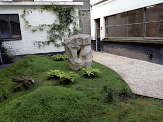Urban Garden Designer Garden Plants & flowers Stone