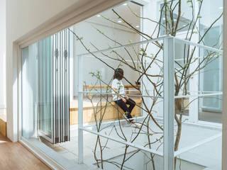 Modern conservatory by AAPA건축사사무소 Modern