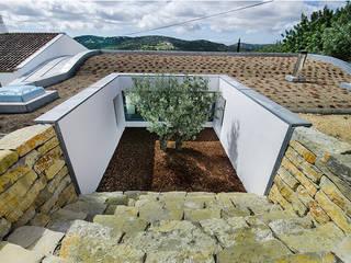 Casa MalhÃO: Jardins de fachada  por CORE Architects,Moderno