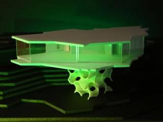 Grapevine House von Peter Stasek Architects - Corporate Architecture Ausgefallen