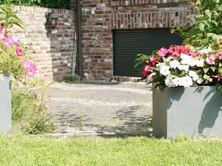 Pflanzwerk Jardin moderne
