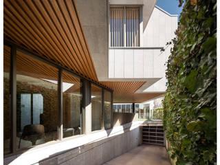 Jardines de estilo moderno de AIR GARDEN Moderno
