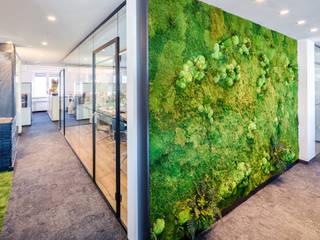 Grünes Büro (Moos):  Bürogebäude von KREOS GmbH&Co.KG