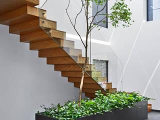 Casa VC Pasillos, vestíbulos y escaleras minimalistas de Di Vece Arquitectos Minimalista