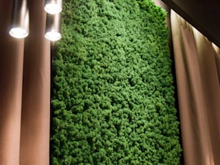 Moss wall design by Moss Trend :  Living room by Moss Trend
