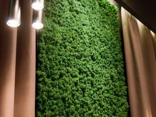 Moss wall design by Moss Trend : modern Living room by Moss Trend