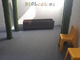 Vasos biológicos : Jardins zen  por MY STUDIO HOME - Design de Interiores