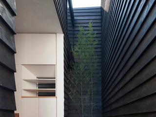 階段が庭と居場所をつなぐ狭小住宅 モダンスタイルの 玄関&廊下&階段 の acaa モダン