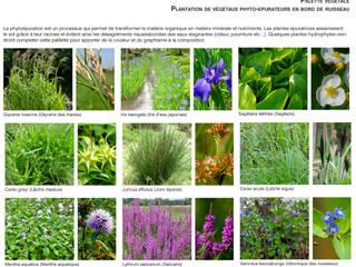 Palette végétale spécifique / Valorisation du cours d'eau: Jardin de style  par Atelier Aralia
