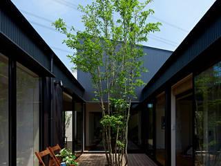 Jardines de estilo moderno de arc-d Moderno