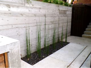Modern Zen Garden in Woking U.K:  Zen garden by GreenlinesDesign Ltd