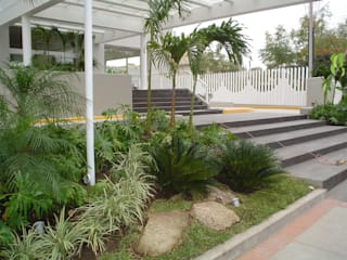 Garden by BARRAGAN ARQUITECTOS, Tropical