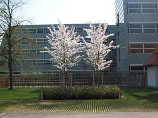 Garten-Landschaftsbau Hierreth-Felser GmbH Jardins indutriais