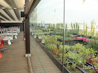 TP618 Moderner Balkon, Veranda & Terrasse Holzwerkstoff Grün