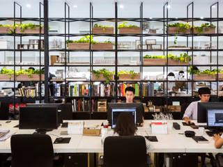 の MIA Design Studio モダン