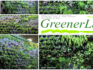 Evolución Jardin Vertical:  de estilo  de GreenerLand. Arquitectura Paisajista y Tematización