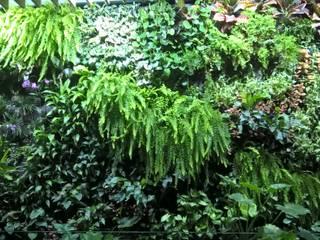 Detalle Jardin Vertical Interior:  de estilo  de GreenerLand. Arquitectura Paisajista y Tematización