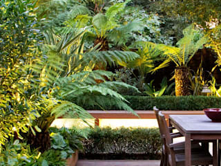 Tropical garden design MyLandscapes Garden Design 庭院