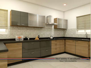 PROJECT @ KUKATPALLY by shree lalitha consultants Asian Engineered Wood Transparent
