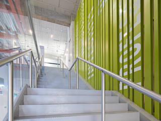 Modern Corridor, Hallway and Staircase by IAARQ (Ibarra Aragón Arquitectura SC) Modern