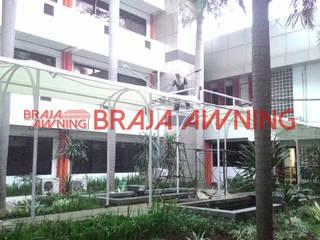 Braja Awning & Canopy GartenLauben und Gewächshäuser Eisen/Stahl Weiß