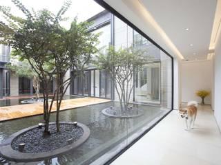 The Lake Dragon Minimalist corridor, hallway & stairs by Clifton Leung Design Workshop Minimalist