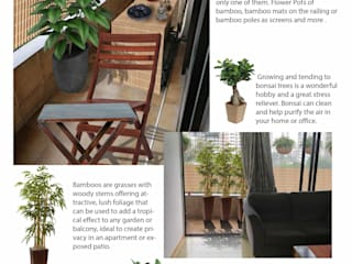 Balcony Makeover: country  by GreenCausa,Country