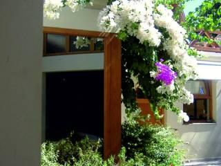 Aida tropeano& Asociados Classic style garden Bamboo Green