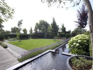 Jardin moderne par Groengroep b.v. Moderne