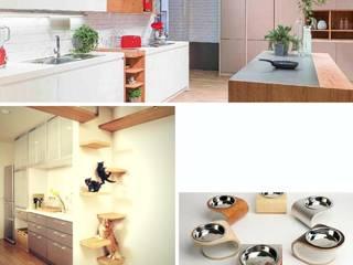 In cucina con i gatti di Semplicemente Insieme Classico